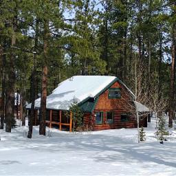 wintertime cabin mountain pinetrees freetoedit