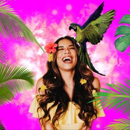 eccarnival carnival freetoedit paradise parrot