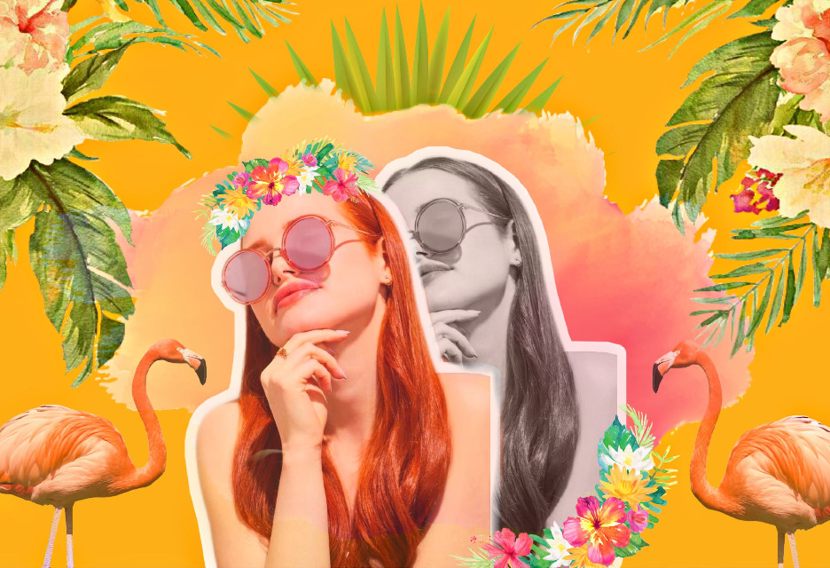 #freetoedit #tropical #flamingo #flowers #madelainepetsch #challenge #follow #like #vote