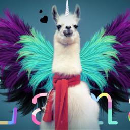 srccarnavalwings carnavalwings freetoedit lama flügel