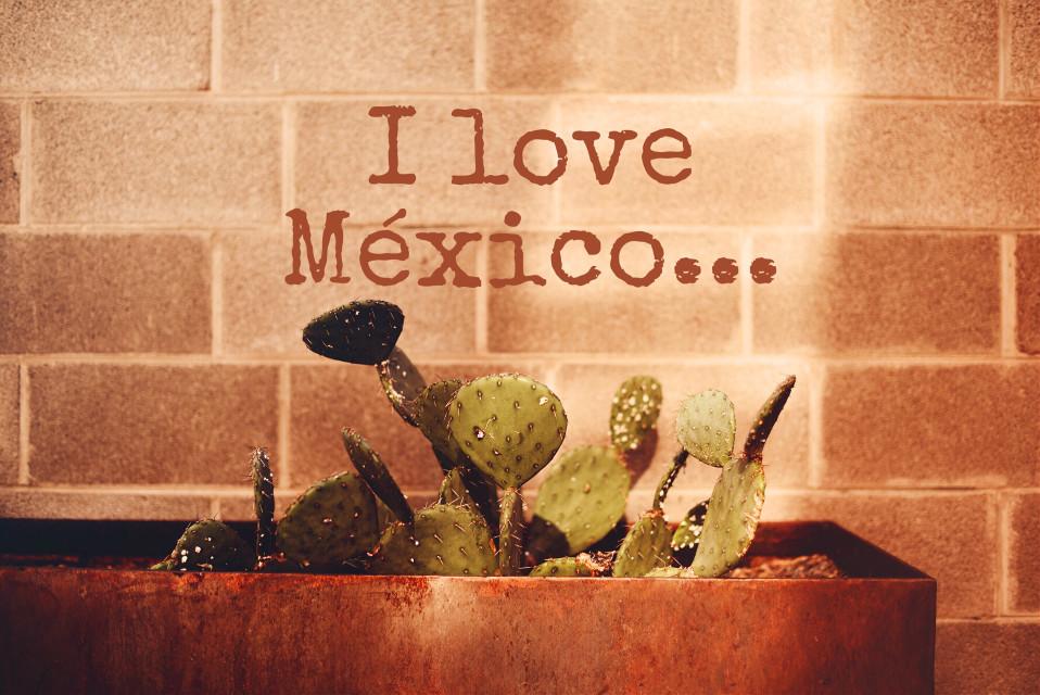 #freetoedit #ilove #mexico