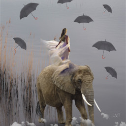 freetoedit elephant digitalart creative work