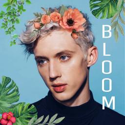 freetoedit troyesivan troyesivanwild troye bloom