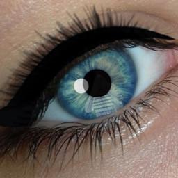 whatdoyouthink eyes blueeyes kawaiigirl eyelashes freetoedit
