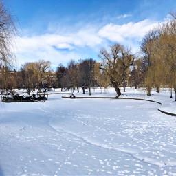 freetoedit snowtracks snow winter urban pcdaylight daylight