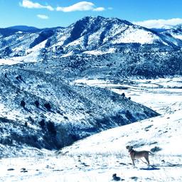 freetoedit mountains mountainlyfe nature adventures