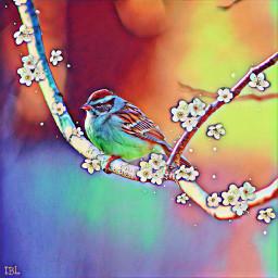 freetoedit springbrush floramagiceffect colorful myedit