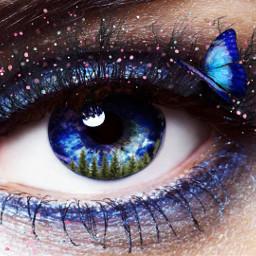 picsart eyes eye blue butterfly freetoedit
