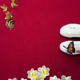 ircspringshoes springshoes freetoedit spring flowers