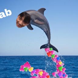 freetoedit fab meme jungkook dolphin