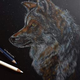 art drawing commission wolf snow