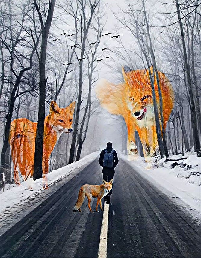 🦊🚶🏻#freetoedit #foxi #fox #forest #winterforest #winter #man #trees #blacktrees #birds #human #snow #road #roadtrip #feast #magic #effects #feastmagiceffect #feastmagic #nasycenie