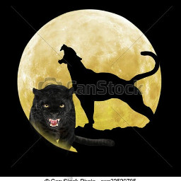 panther cleo design freetoedit srcpanthers