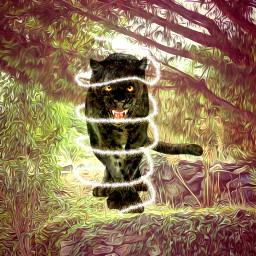 srcpanthers panthers freetoedit simple jungle