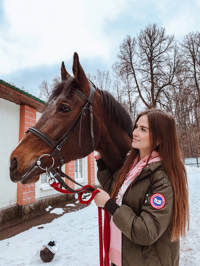 Инстаграм: vita_di_vittoria  #horse #horses #horselover #spring #springtime  #animal #animals #cute #cutegirl #hair #beautiful #nice #nature #naturelover