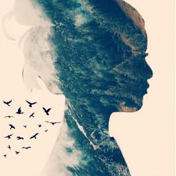 irchersilhouette hersilhouette freetoedit picsart dailyremixchallange