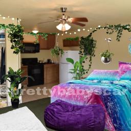 motel summer hotel room plant