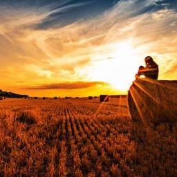 field sun sonnenuntergang freetoedit