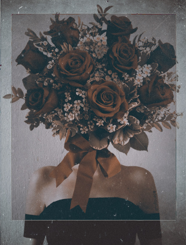 and like a rose blooming, they showed the beauty that lies within their sweet decadence, their fragrant scent, their prickling might— the real soul of a rose that each spectators had waited so long to find.  l.  #freetoedit #aesthetic #roses #flowers #surreal #surrealism #woman #girl #frame #noiseeffect #1994effect #bouquet #bouquetofroses