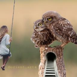 freetoedit girl swing owl owls