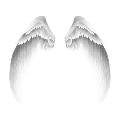 wings angel white halo strength