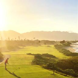 golf hawaii paradise sun ocean freetoedit