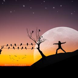 freetoedit deer birds powerlines tree