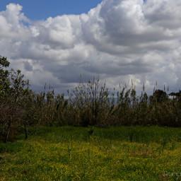 pcfields fields freetoedit landscape naturephotography
