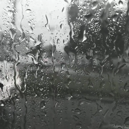 pcsteamywindows steamywindows rain rainyday tumblrstyle freetoedit