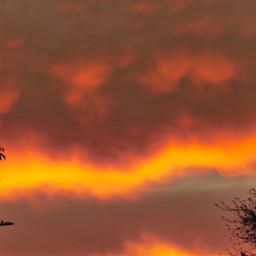 angeleyesimages landscapephotography sunset sunsets beautifulsunsets freetoedit