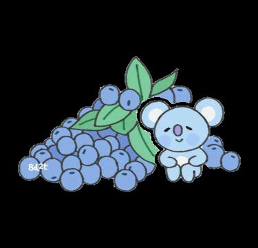 #koya #art #grape #blue #purple #fruit #bts #namjoon