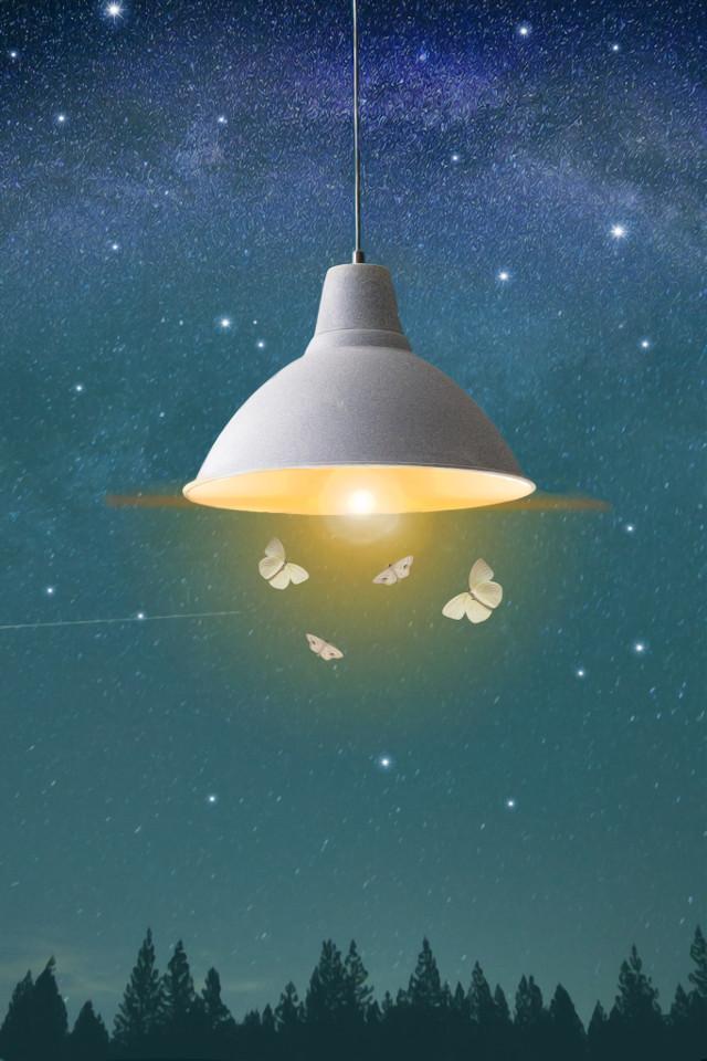 #freetoedit #night #moth #light