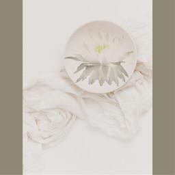 white purity emergence emergente freetoedit