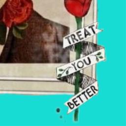 freetoedit treatyoubetter shawnmendes shawnmendeslyrics rose