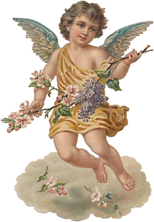 Image result for aesthetic angel