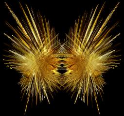 freetoedit eemput fractal wing