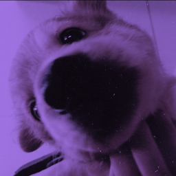 aesthetic aestheticpuppy cute aestheticedits aestheticgrudge freetoedit