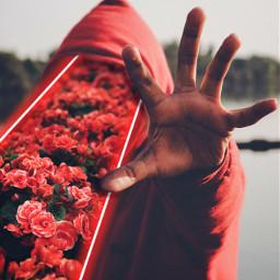 4 freetoedit red hoodie flowers