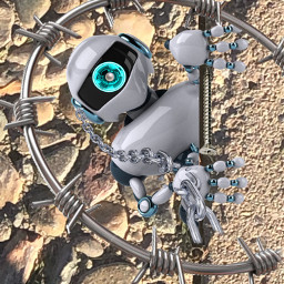 robots freetoedit summer lookingatyou robotica sciencefiction