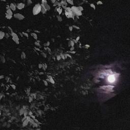 photography darkness darknight light moonlight