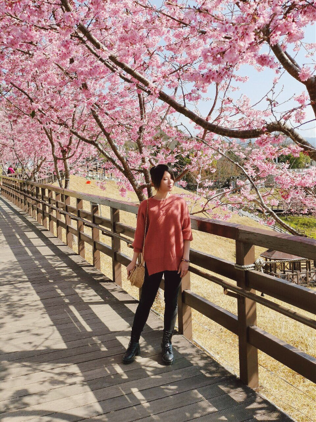 Pretty 🌸🌸🌸 #freetoedit #travel #interesting #japan #nature #photography #summer #blackandwhite #colorsplash #portrait #flowerframe