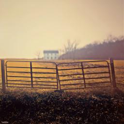 pcthegoldenhour thegoldenhour freetoedit farmland myoriginalphoto