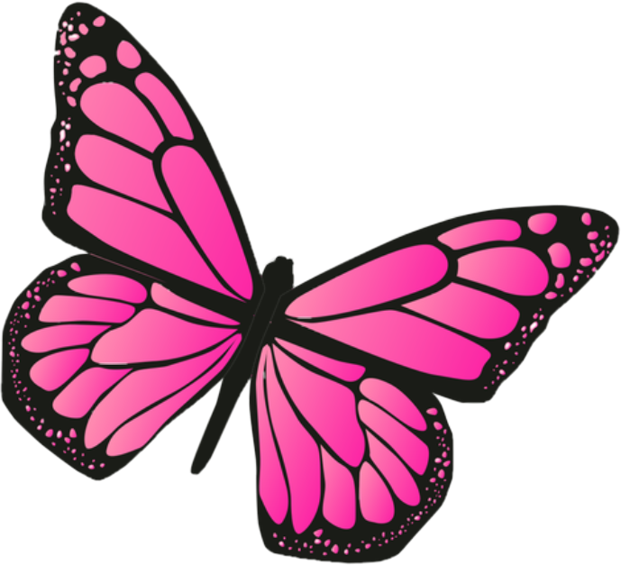 Hey y'alls!!🦋🦋🦋🦋 #butterfly #pink #freetoedit