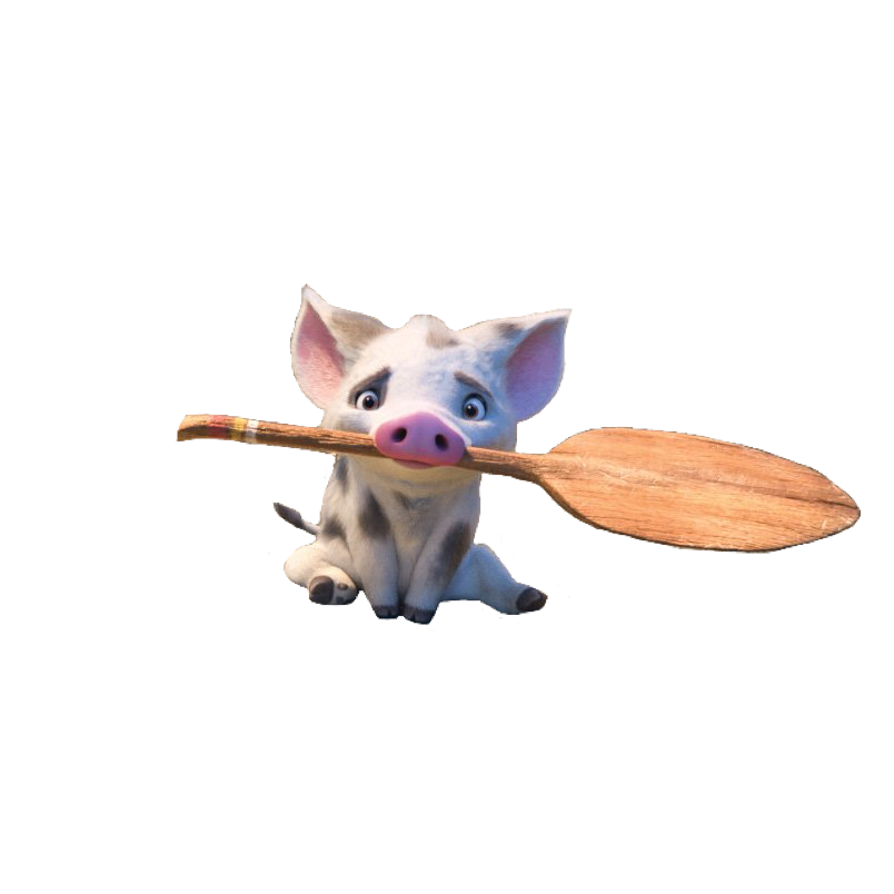moana pua pig oar character disney cute adorable aesthe