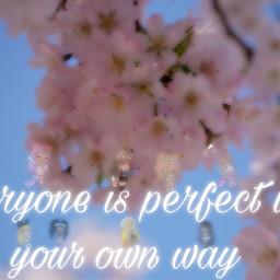freetoedit youarebeautiful youareperfect