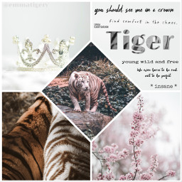 freetoedit tiger wild quote quotes picsart edit nature animal jungle king crown flowers white beautiful collage fur freedom whitetiger
