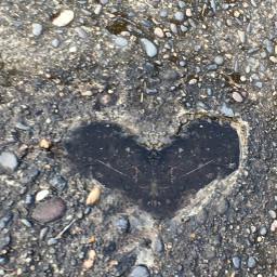 freetoedit love me heart loveisintheair