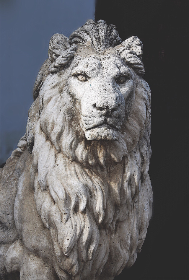 #sculpture #lion #statue #stoneart #gamesofthronesinspired #hugefan ⚔️🖤🗡 #warriorsoul #lionheart #symbolism  #family and #housesymbol #symbol of #strength and #power  #streetphotography  #freetoedit
