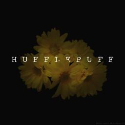 freetoedit hufflepuff hufflepuffhouse hufflepuffedit hogwarts