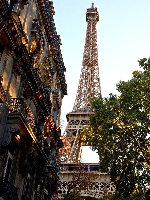 #photography #tower #eiffletower #paris #france #freetoedit